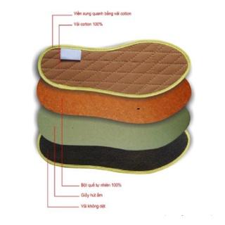 Lót giày nam nữ tăng chiều cao LOTXINH, Lót giầy hương quế khử mùi hiệu quả thumbnail