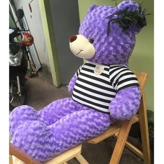 Gấu bông teddy khổ 1m4 màu tím cao cấp