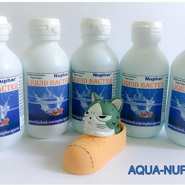Thuốc chống sốc nước cá cảnh