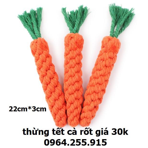 cà rốt tết thừng