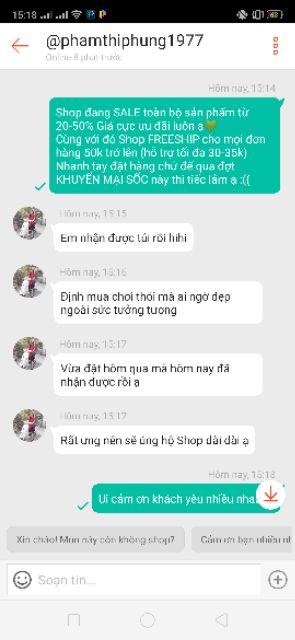 [FREESHIP-HÀNG NEW] Túi Ngọc Trinh Chael, túi đeo chéo siêu sang (19x15)