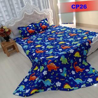 Chăn trần cotton poly CP26 hàng loại 1, thoáng mát, màu sắc trang nhã, phong cách hàn quốc
