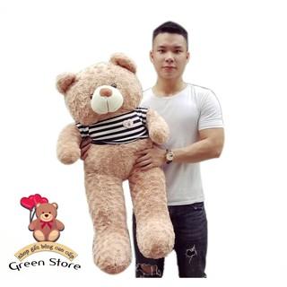 (Ảnh Thật 100%) Gấu bông teddy sữa 1M2 khổ vải Cao Cấp loại 1 size 1m6