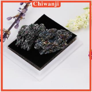 [CHIWANJI] Rocks and Minerals Collection Earth Science Teaching Tool – Black Quartz