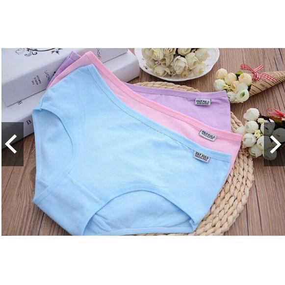 [ quần lót] 10 quần lót  coton xuất mỹ, quần lót thông hơi, quần lót ren,quần lót điều hòa, quần chip, quần su đúc