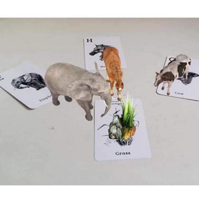 Bộ 37 Thẻ Animal 4D - Thế giới động vật trên ảnh 4D