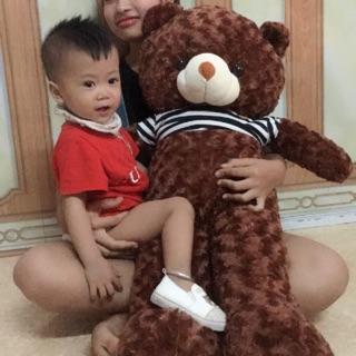 Gấu teddy khổ vải 1.1m