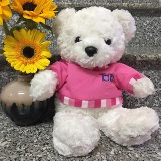 Gấu teddy mặc áo hồng