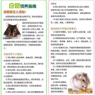 Đồ Chơi Bóng Chạy Bằng Nhựa Cho Chuột Hamster214DX thumbnail