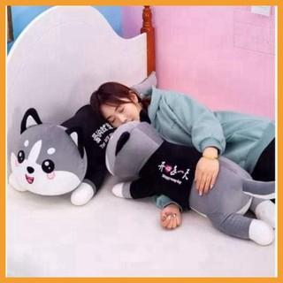 Mèo Husky Bông Siêu To Khổng Lồ-Chất Liệu Lông Nhung Mềm Mịn Co Dãn 4 Chiều Gấu Bông Mèo Husky Đáng Yêu Kích Thước 50cm thumbnail