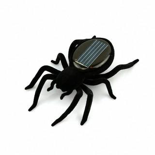 Đồ chơi con nhện năng lượng mặt trời