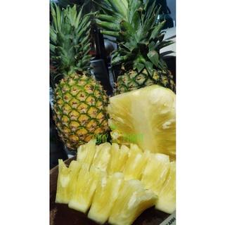 Thơm Mật Đơn Dương siêu ngọt – trái 1kg6 – 2kg (chỉ giao khi vực HCM)
