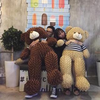Gấu Bông Teddy Cao Cấp (size 1m8)