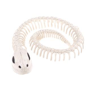 SUN33❤❤ Snake skeleton bones for horror halloween partydecoration access