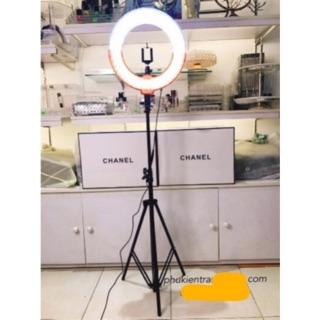 Cây đèn hỗ trợ livestream 26cm make up cao 2m1