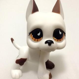 1pc new Littlest Pet Shop Cat Dog Animal Figures Collection kids Child Toys