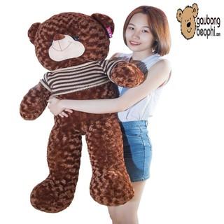 Gấu bông teddy áo len cao cấp màu socola khổ vải 1m2 chiều cao thật 1m