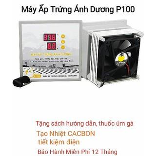 Máy ấp trứng Ánh Dương mini – P100 ấp 100 trứng – Tặng Thuốc úm gà