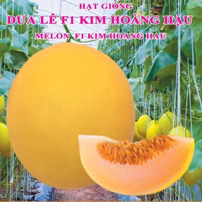 Hạt giống Dưa Lê F1 Kim Hoàng Hậu (0.1g)
