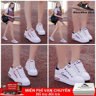 Giày thể thao nữ tăng chiều cao 6cm Giày nữ đế độn trắng cực đẹp phong cách hàn quốc (FREESHIP+FULL BOX) thumbnail
