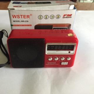 Loa thẻ nhớ FM mini WSTER Mooel -239