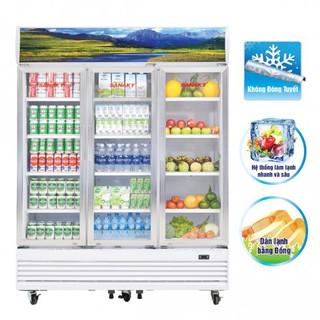 Tủ Mát Sanaky 1400 lít VH-1520HP/HP3 – Tủ mát hai cánh dàn lạnh đồng