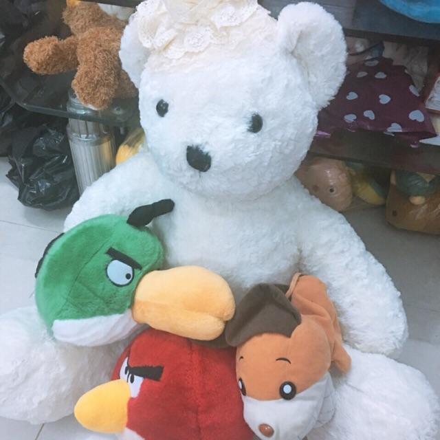 combo gấu của lyly nguyen