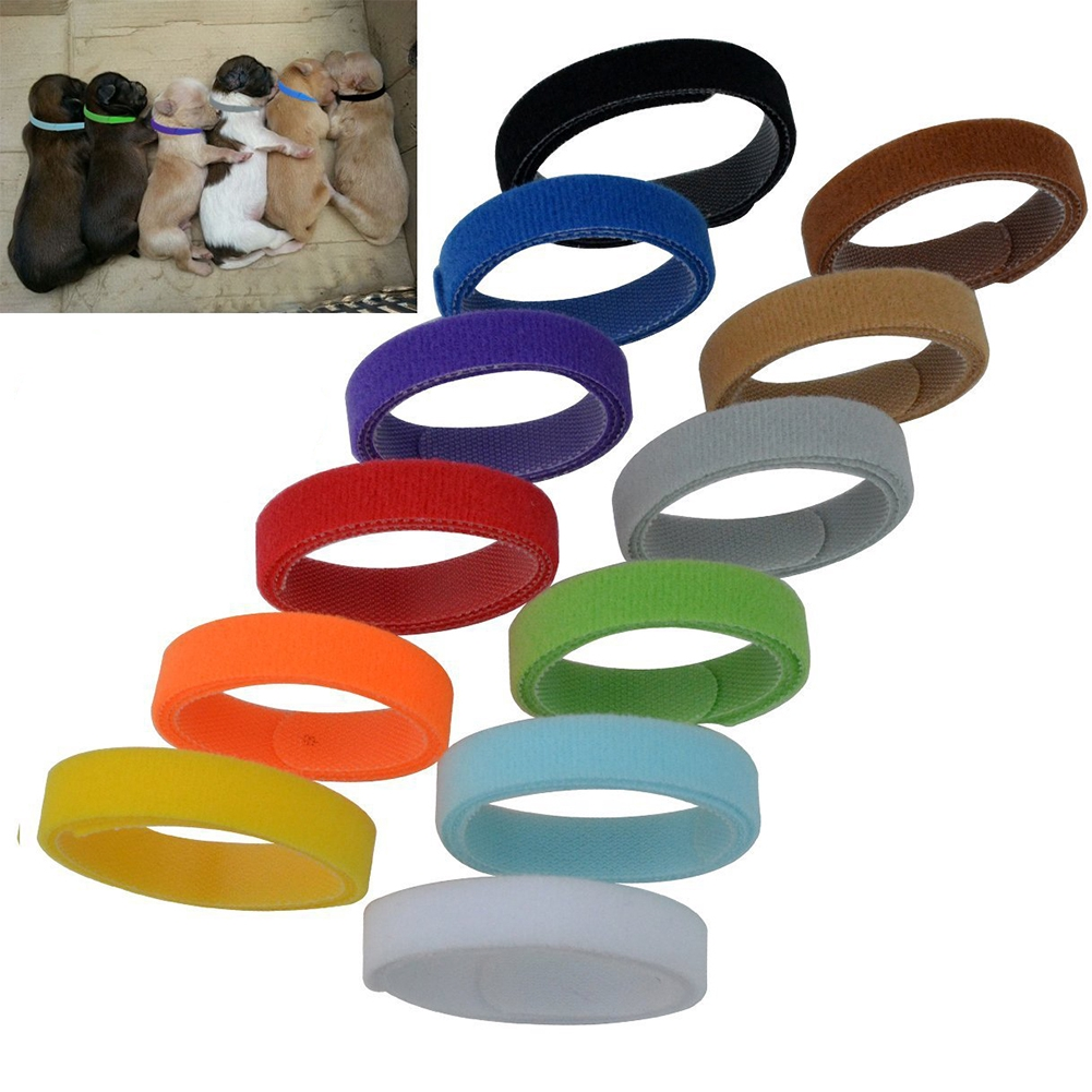 12PCS/Pack 10mm*300mm Lovely Convenient Fashion Soft Nylon Pet Dog Magic Stick  Collars