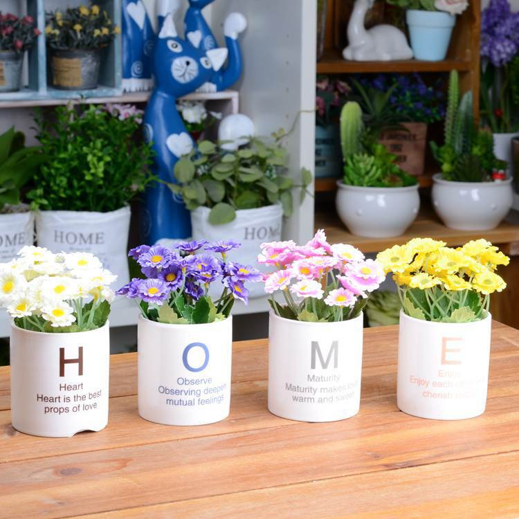 Bộ chậu cây HOME để bàn - bộ hoa cúc - 3137265 , 400510759 , 322_400510759 , 320000 , Bo-chau-cay-HOME-de-ban-bo-hoa-cuc-322_400510759 , shopee.vn , Bộ chậu cây HOME để bàn - bộ hoa cúc