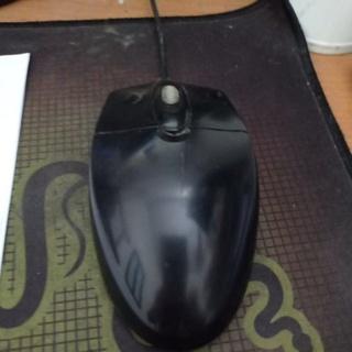 con chuột máy tính thumbnail