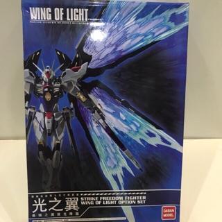Mô hình lắp ráp Wing of light