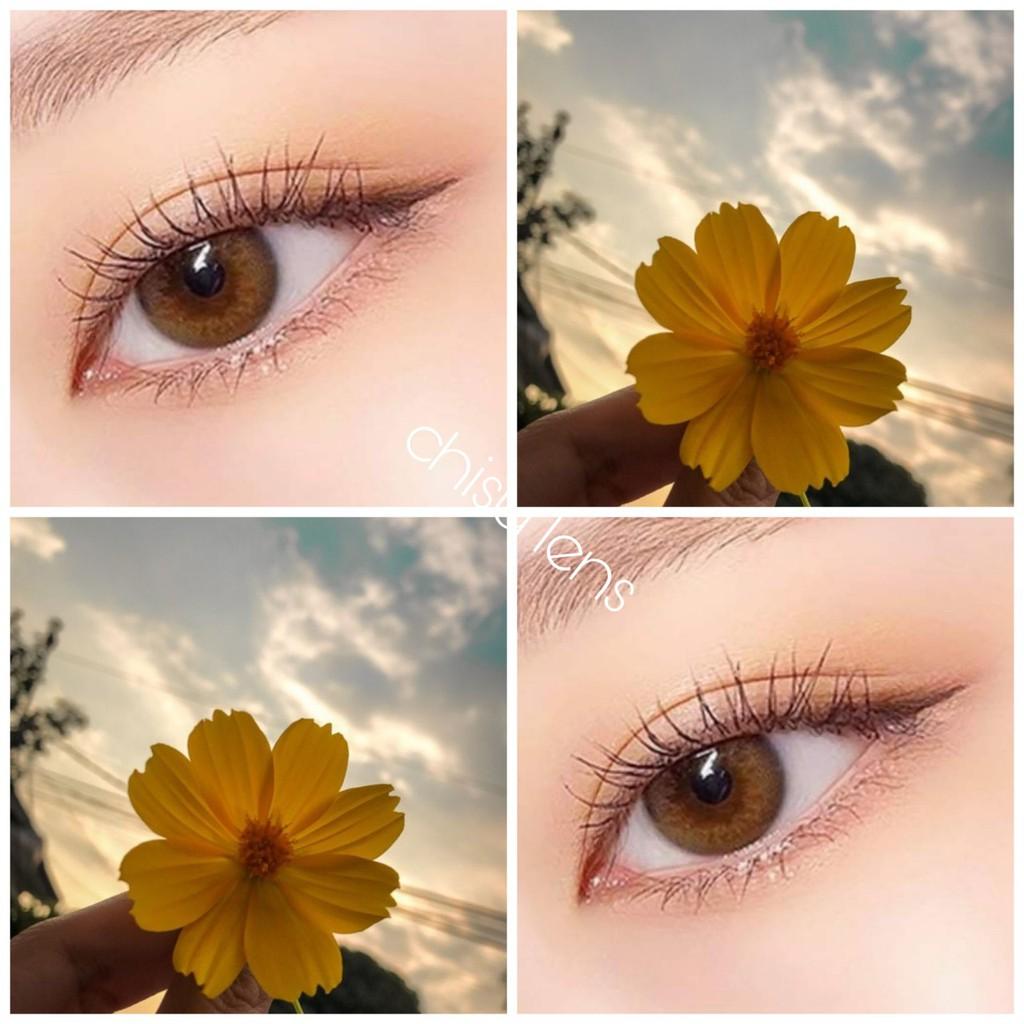 10 Mẫu lens (kính áp tròng) nâu tây tự nhiên sử dụng 1 năm (HOT 2021)