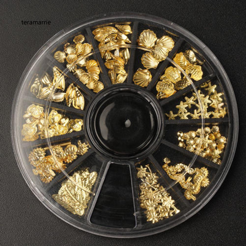 Hộp phụ kiện trang trí móng tay 3D hình vỏ sò / ngôi sao xinh xắn