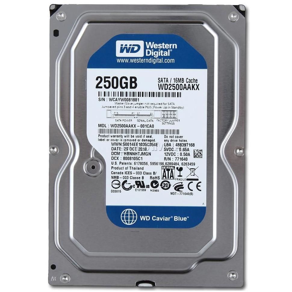 Ổ cứng Western Digital Blue 250GB sata (hàng tháo máy bộ dell, hp) - 2471848 , 527888021 , 322_527888021 , 450000 , O-cung-Western-Digital-Blue-250GB-sata-hang-thao-may-bo-dell-hp-322_527888021 , shopee.vn , Ổ cứng Western Digital Blue 250GB sata (hàng tháo máy bộ dell, hp)