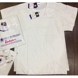 Áo lót nam LEDATEX cotton trắng siêu rẻ, siêu đẹp(áo cộc tay/áo ba lỗ)