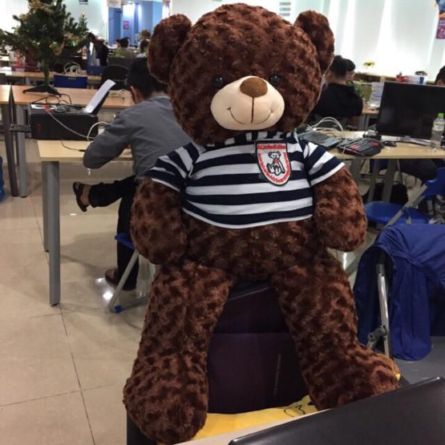 Gấu bông Teddy Cao Cấp khổ vải 1m Cao 80cm màu Nâu hàng VNXK