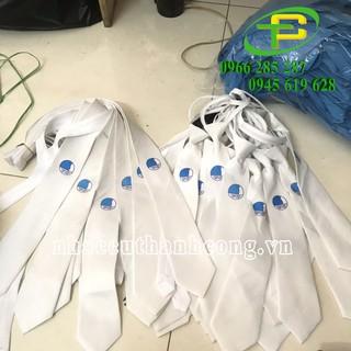 Cavat hội liên hiệp thanh niên, cà vạt hội LHTN