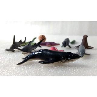 Mô hình động vật biển Safari