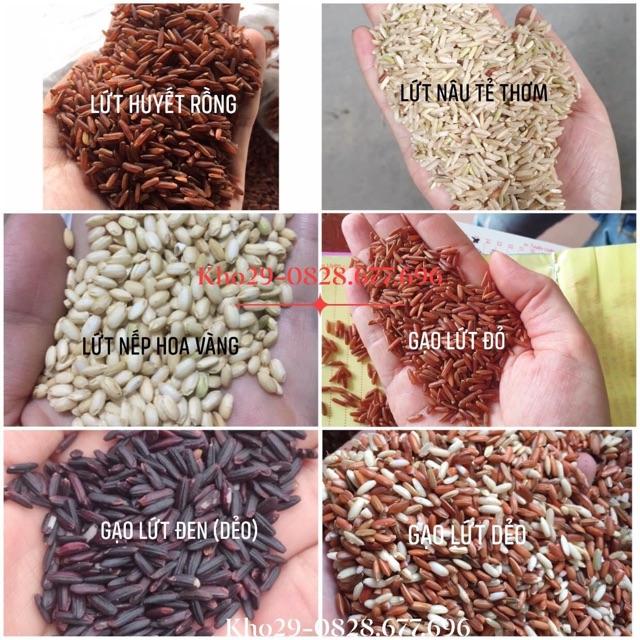 Gạo lứt các loại : gạo lứt huyết rồng- lứt đỏ- lứt đen- lứt nâu- lứt dẻo- lứt nếp hoa vàng-1Kg(HÚT CHÂN KHÔNG)