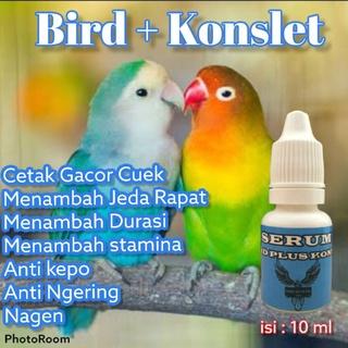 Serum In hình 3 ngày Loverbird thumbnail