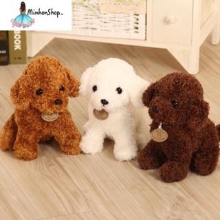 Chó poodle 🐶 28cm
