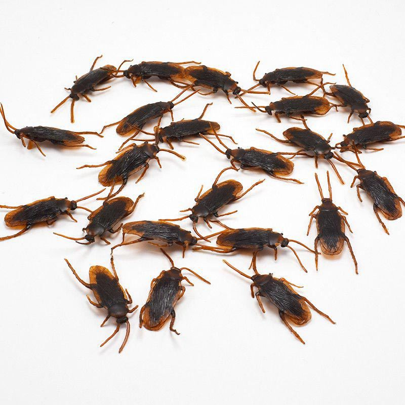 12 Pcs Halloween Simulated Plastic Cockroaches Deceptive Props Toy