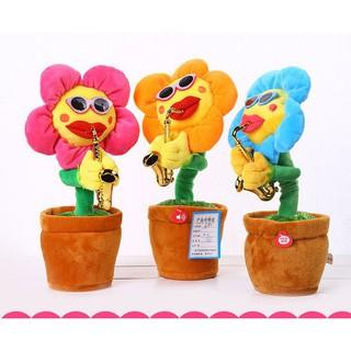 [Sỉ] Hoa uốn éo 60 bài hát – hoa hướng dương biết hát, hoa biết thổi kèn