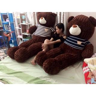 Gấu bông teddy khổ vải 1m6 hàng chuẩn chất siêu dễ thương giá rẻ