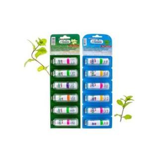 [Siêu rẻ] Ống hít 2 đầu Green Herb - hổ trợ viêm mũi dị ứng thumbnail