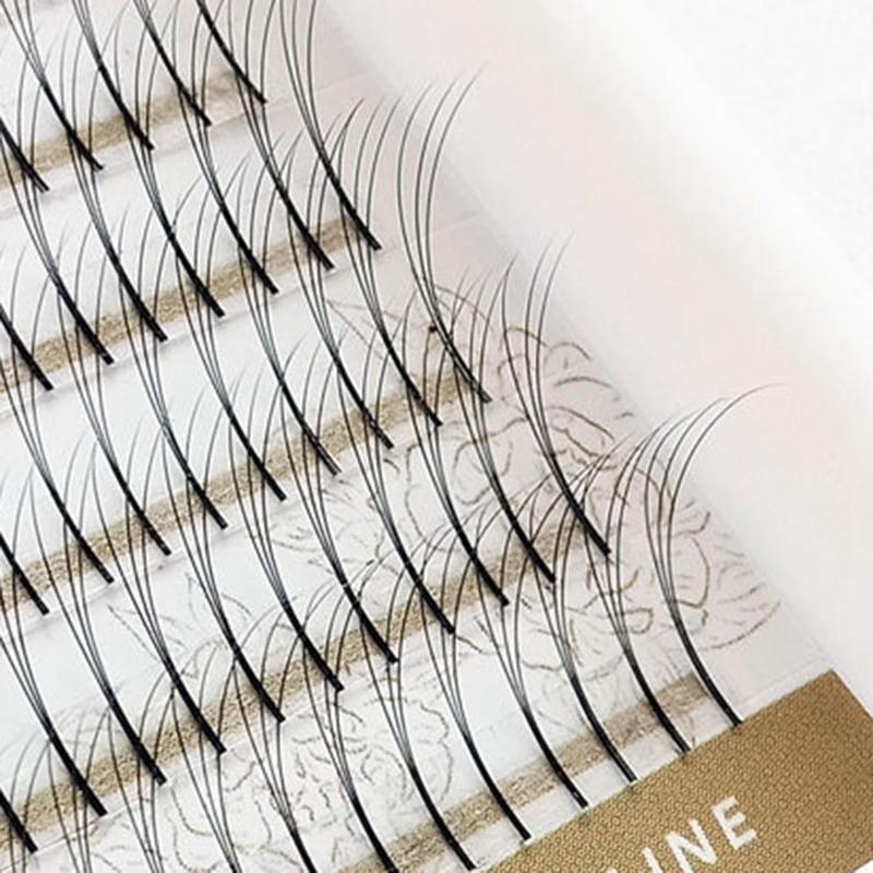 Mua Premade Fan Volume Eyelash Extensions 3D 5D 6D Cluster