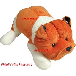 Chó Bông Pitbull size1m2 – Hàng Việt Nam Cao Cấp cực đẹp