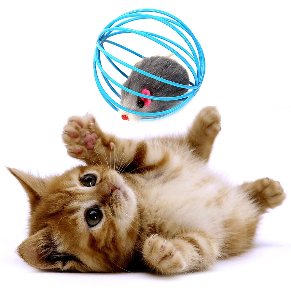 Pet Cat Toys Cute Artificial Mouse in Rolling Rat Cage Kitten Gift Interactive Play