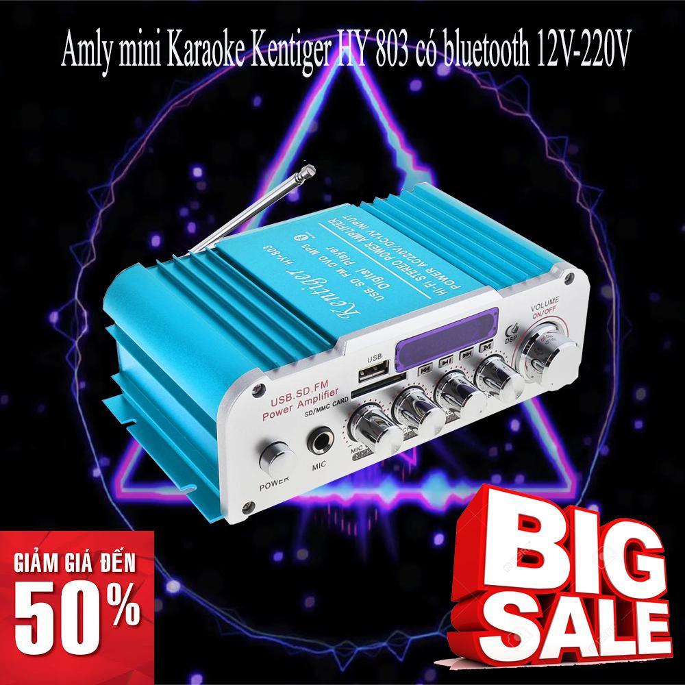 Amply kết nối Bluetooth cao cấp nhập khẩu, Amply mini cao cấp Amly mini Karaoke Kentiger HY 803