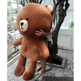 Gấu brown khổ m4 thumbnail